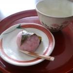 Sakura Mochi – Japanese Food –